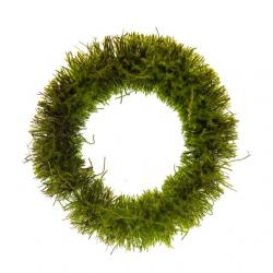 Koszorú növényi rost kerek 30cm zöld @